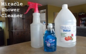 5 Great Diy Cleaning Solutions Part One Thifty Sue